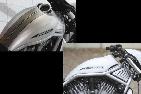 "Rick´s Airboxcover ""Streetfighter"""